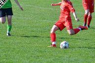 2017-03-26-Frauen-gg-SG-Gundelsheim-Pokal-1