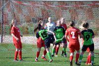 2017-03-26-Frauen-gg-SG-Gundelsheim-Pokal-7