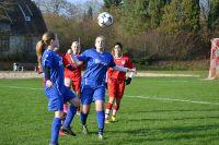 2016-11-13-Frauen-gg.-SV-Heilbronn-a.-L-8