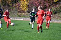 2016-10-30-Frauen-gg-VfL-Eberstadt7