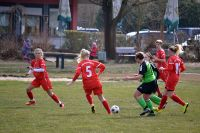 2018-03-04-Frauen-gg-SG-Gundelsheim-6